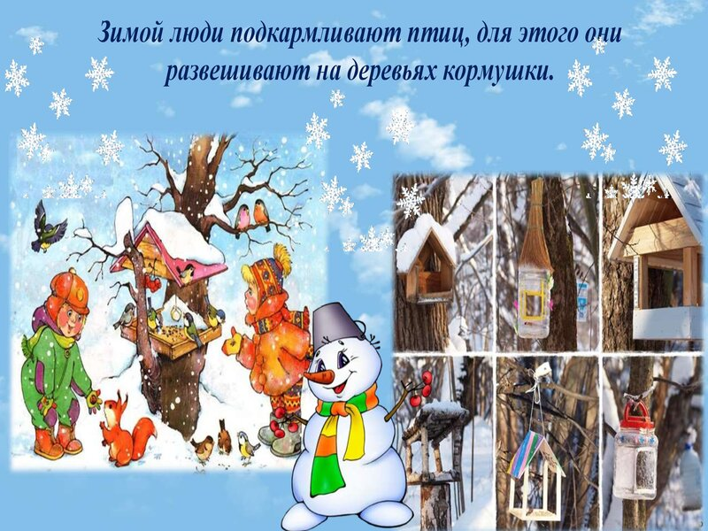 zima_0000011